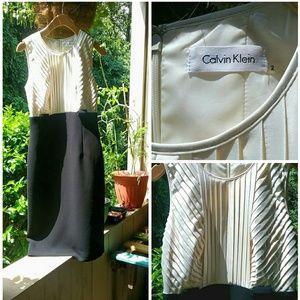 Calvin Klein Classic Vintage Inspired Dress